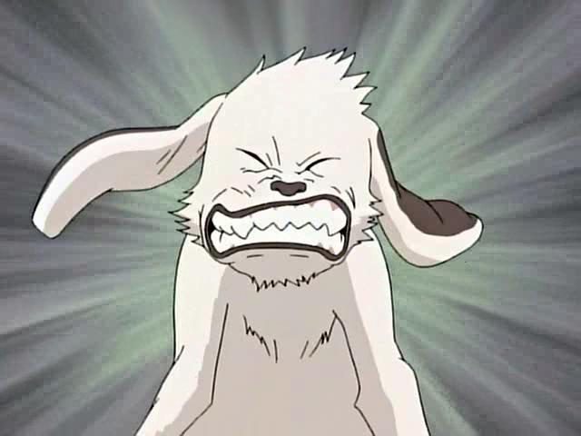 Akamaru je inuzuka kiba kibův ninken 忍犬 ninja pes nejlepší