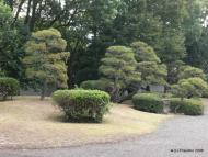 Samurajská zahrada 2