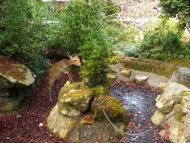 Mijadžima, zahrada Momidži s jeleny