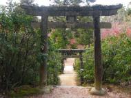 Mijadžima, cestička od svatyně v parku Momidži