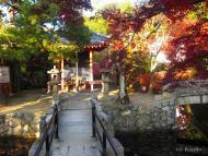 Kjóto, zahrada u Kijomizu-dera